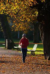 Regent's Park, London, November 4th 2014.