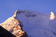 Morning light on Mount Athabasca, Columbia Icefields, Jasper National Park, Alberta, Canada