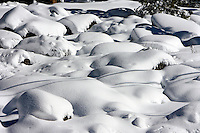 24 February 2008: Snow covered rocks at Kings Beach after a late winter storm in Lake Tahoe, Truckee Nevada California border in the Sierra Mountains.