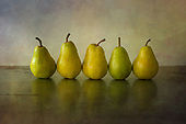 Fine Art and Still Life Photography