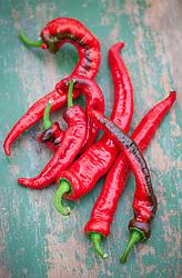 Chilli 'Red Cayenne'
