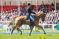 Nicholson Andrew, (NZL), Nereo<br /> Dressage<br /> Mitsubishi Motors Badminton Horse Trials - Badminton 2015<br /> © Hippo Foto - Libby Law<br /> 07/05/15