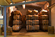 Barrels stacked high with sun shining through the roof Champagne house Maison Giraud-Hemart, also called Champagne Henri Giraud, Ay, Vallée de la Marne, Champagne, Marne, Ardennes, France
