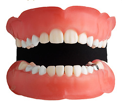 teeth 003 Teeth Dentures