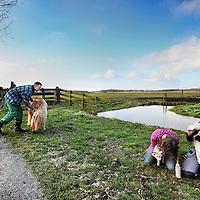 Nederland, Amsterdam , 12 maart 2012..Zorgboerderij Balder in recreatiegebied het Twiske  gaat uitbreiden..Er worden allemaal plannen bedacht om het natuur recreatiegebied rendabel te maken..Op de foto enkele mensen van een zorginstelling (begeleidster en client) en links Hidde Abels die de Zorgboerderij leidt...Foto:Jean-Pierre Jans