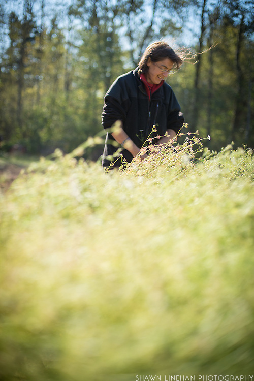 Environmental portrait of Shari Sirkin amongst cilantro and coriander.