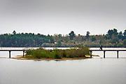Nederland, Well, 18-10-2020 Herfstdag in de herfstvakantie in het natuurgebied de Maasduinen van staatsbosbeheer . Ondanks de oproep thuis te blijven vanwege het verspreidingsgevaar van het coronavirus zijn veel mensen aan de wandel. Wandelaars proberen anderhalve meter afstand te houden.Foto: ANP/ Hollandse Hoogte/ Flip Franssen