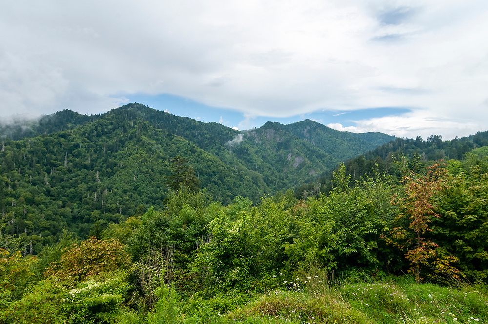 View of Anakeesta Mountain at a scenic overlook in Great Smoky Mountains National Park in Gatlinburg, Tennessee on Thursday, August 13, 2020. Copyright 2020 Jason Barnette