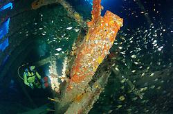 Schiffswrack SS Ulysses und Taucher im Schiffs Wrack, früher bekannt als Frachter von Gubal, Shipwreck SS Ulysses and scuba diver inside the ship wreck, Straße von Gubal, Rotes Meer, Ägypten,  Strait of Gubal, Red Sea, Egypt