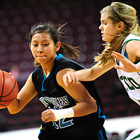 031213  Adron Gardner/Independent<br /> <br /> Navajo Prep Eagle Matheney Wilson (12), left, drives around  Texico Wolverine McKenzi Mayfield (11) during the 2A New Mexico High School Basketball tournament quarterfinals at the Santa Ana Star Center in Rio Rancho Tuesday.