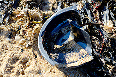 Plastics are seen washed up on the beach in Broadstairs, Kent - 12 Feb 2019