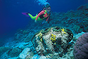 diver with giant clam,<br /> Tridacna gigas, MR 168<br /> Great Barrier Reef, Australia,<br /> ( Western Pacific Ocean )