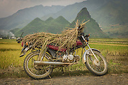 A motorbike - Honda Win - parked along the roadside loaded with rice husks located between Nghia Lo and Mu Cang Chai, Yen Bai Province, Northern Vietnam, Southeast Asia