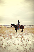 Canadian Cowboy of the Year Blake Schlosser on his ranch near Nanton, Alberta, December 19, 2011. Photograph by Todd Korol