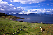 Tierra del Fuego, Patagonia (Argentina) as seen from the Beagle Channel and the south lying Navarino Island (Chile).