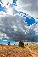 Woman hiking the Squaw Creek Canyon trail in Canyonlands National Park under threatening afternoon cumulonimbus clouds, Utah, USA.