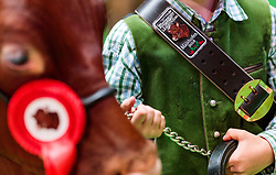 29.04.2018, Maishofen, AUT, XII Weltkongress Pinzgauer Rind, im Bild Feature // Feature during the XII Pinzgauer cattle World Congress in Maishofen, Austria on 2018/04/29. EXPA Pictures © 2018, PhotoCredit: EXPA/ JFK