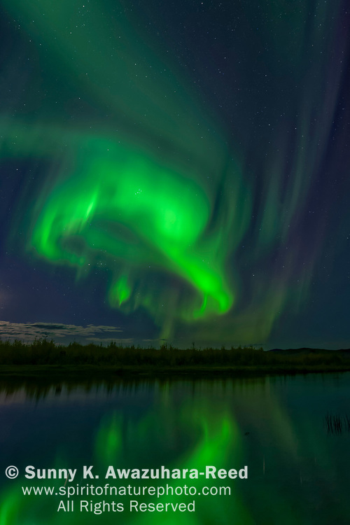 Bright green aurora swirling over Harding Lake with reflections, Fairbanks, Interior Alaska, Autumn.