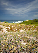 These dunes are off of Collins Road in the Cape Cod National Seashore.