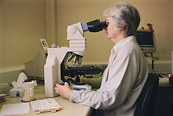 Biomedical scientist working in cytology laboratory using microscope to screen cervical smears,