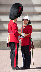© Licensed to London News Pictures. 26/06/2017. London, UK. Captain Megan Couto (R) of the 2nd Battalion, Princess Patricia's Canadian Light Infantry becomes the first woman to command the Queen's Guard at Buckingham Palace. The Canadian Light Infantry are taking part in the Changing of the Guard Ceremony as part of the 150th anniversary of the founding of the nation of Canada. Photo credit: Peter Macdiarmid/LNP