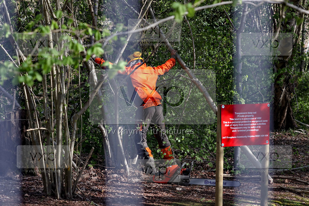 "A lumberjack is seen cutting trees in ancient Crackley Woods HS2 site to clear the way for the High-speed rail on Wednesday, April 15, 2020. (Photo/Vudi Xhymshiti)<br /> Investors say it will provide the greenest, safest and most efficient form of transport. But, environmental activists are opposing saying that it will negatively impact on the country's green spaces and countryside. The Wildlife Trust claimed in a recent report that ""the deep cut HS2 will make across the landscape could stop nature's recovery in its tracks."""