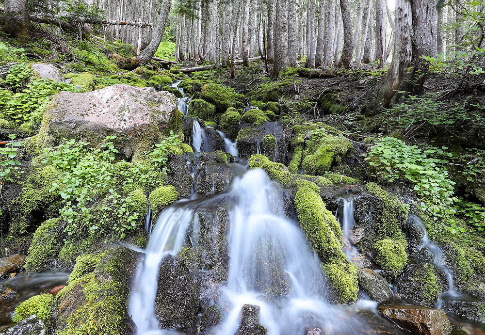 Waterfalls on the way to Spray Park Trail in Mount Rainier National Park located in Washington. Photo/Andrew Shurtleff Photography, LLC