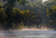 Tropical rainforest surrounding Cristalino River, southern Amazon, Brazil.