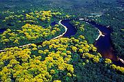 Amazonia_AM, Brasil...Vista aerea do Rio Negro na  Estacao Ecologica de Anavilhanas...The aerial view from the Negro river in Ecological Station Anavilhanas...Foto: JOAO MARCOS ROSA / NITRO