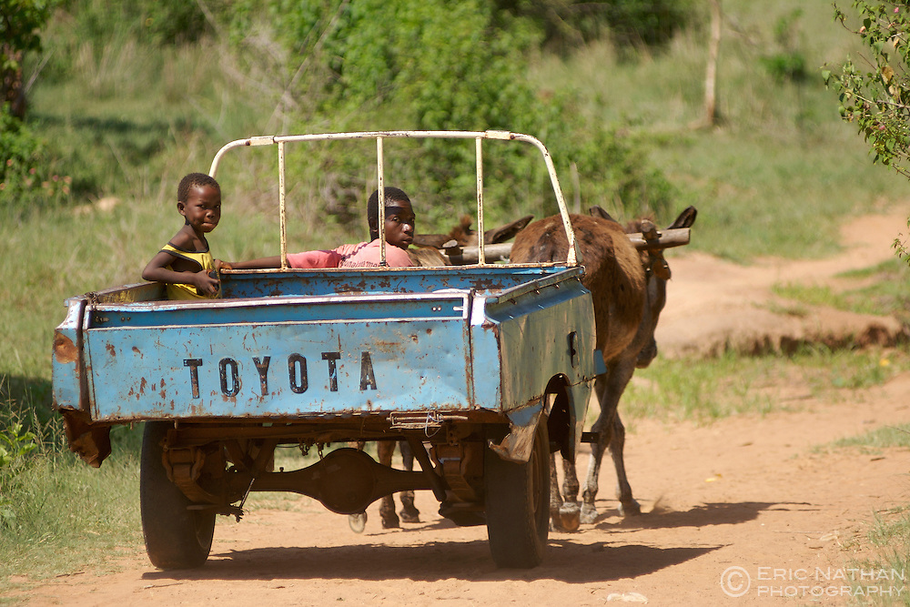 Swazi children with their donkey-powered Toyota pick-up in the Hhohho district of Swaziland.