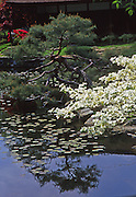 Japanese House and Gardens, Fairmont Park, Philadelphia gardens and arboretums, Philadelphia, PA
