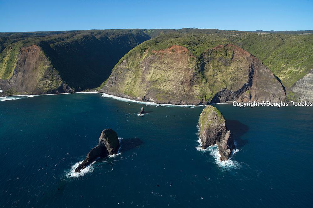 Paokalani Island, North Kohala Coast, Big Island of Hawaii