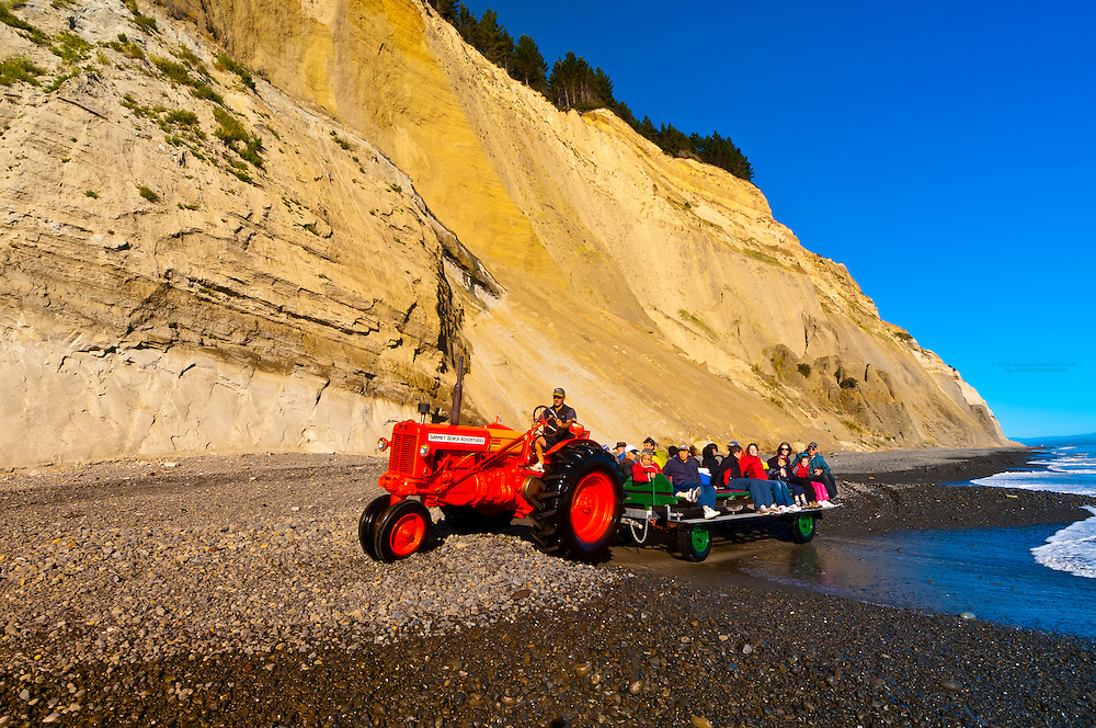 Riding along the beach on a tractor driven trailor to the Cape Kidnappers Gannet Colony with Gannet Beach Adventures, Hawke's Bay, North Island, New Zealand