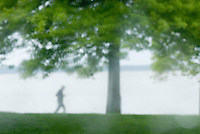 Single person jogging through waterfront park in the rain, Bellingham Washington