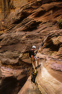 Rappelling down sandstone dry fall, pack suspended, Pine Creek Canyon, Zion National Park, MR, © David A. Ponton