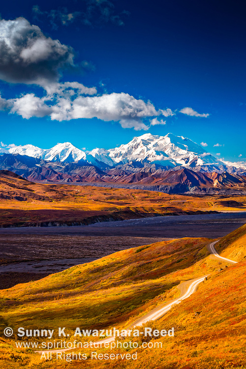 Mount Denali (McKinley), viewed from above Eielson area. Park Road and fall color tundra hill is in the foreground. Denali National Park & Preserve, Alaska, Autumn. Vertical image.