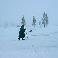 North of the Arctic Circle in Russia, 77-year old Marie Terentéva, a nomadic Komi reindeer herder,  walks in front of spruce trees in a taiga forest while waiting for reindeer to be captured to pull her sled.