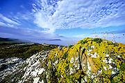 SCOTLAND, SCENICS, Inner Hebrides,nearIsle of Mull Luing island,Scarba isle behind