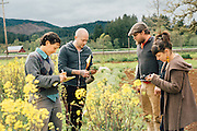 Lane Selman of the Culinary Breeding Networks brings farmers and seed breeders together to create better tasting and better performing vegetables for the general public.