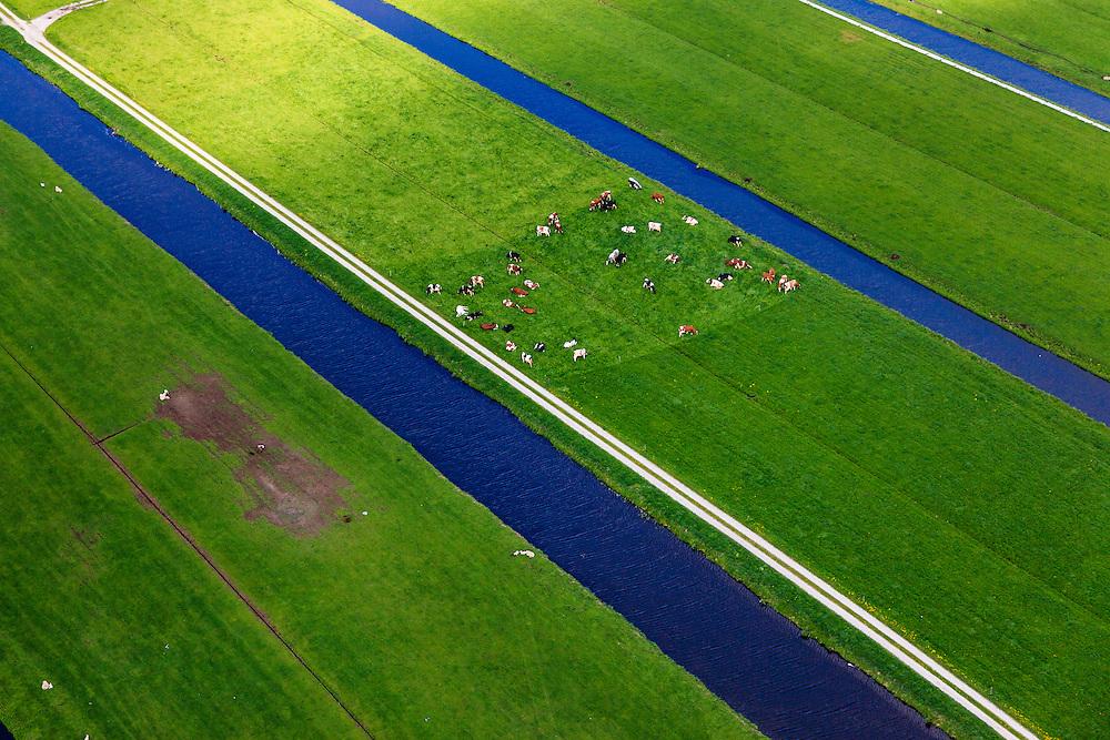Nederland, Utrecht, Groene Hart, 09-05-2013; koeien in het weiland tussen Achttienhoven en Kockengen<br /> Cows in pastures between Achttienhoven and Kockengen  (Green Hart of Holland).<br /> luchtfoto (toeslag op standard tarieven)<br /> aerial photo (additional fee required)<br /> copyright foto/photo Siebe Swart