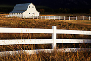 Barn and fence in Montana's Bitterroot Valley.
