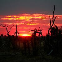 Africa, Botswana, Savute. Sunset at Savute, Chobe National Park.