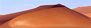 Windswept orange dune with long curve line