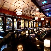 Chicago Blue Line Lounge interior, right underneath the Damen & Milwaukee Blue Line El train station.