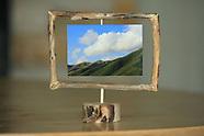 Carmel Driftwood Frames