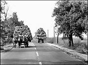 Hongarije, Boedapest, 2-6-1989Buiten de stad op het platteland. Paard en wagen. Foto: Flip Franssen