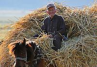 Home with hay-load. Lake Prespa National Park, Albania June 2009