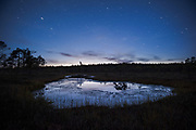 The very last moment of blue hour over calm bog pool, Kemeri National Park (Ķemeru Nacionālais parks), Latvia Ⓒ Davis Ulands | davisulands.com