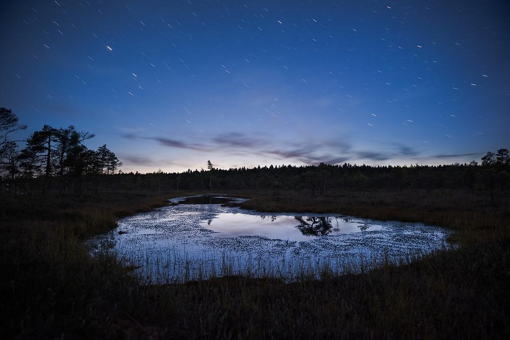 The very last moment of blue hour over calm bog pool, Kemeri National Park (Ķemeru Nacionālais parks), Latvia Ⓒ Davis Ulands | davisulands.com