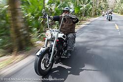 WIllie Jones of Tropical Tattoo riding through Tomoka State Park during Daytona Bike Week 75th Anniversary event. FL, USA. Thursday March 3, 2016.  Photography ©2016 Michael Lichter.